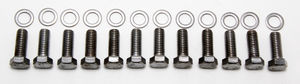 "INTAKE MANIFOLD BOLTS; 3/8""-16 X 1"" Hex Head (12 bolts)-CHROME"